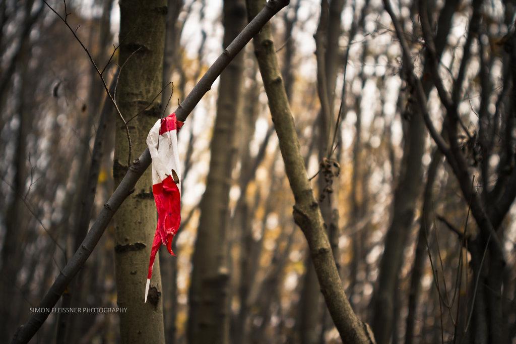 Flagged